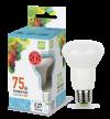 Лампа свд. зеркальная LED-R63-standart 8Вт 220В Е27 4000K 650Лм ASD
