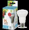 Лампа свд. зеркальная LED-R63-standart 5Вт 220В Е27 4000K 400Лм ASD